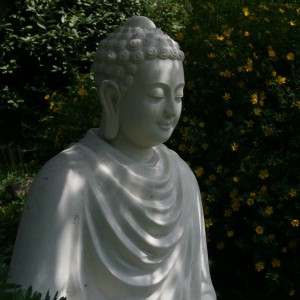 Deepening Our Practice: Exploring Together the Sutra on the Full Awareness of Breathing (Annapanasati)