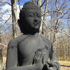 Clarity, Calmness, and Strength: Cultivating Compassion in Ourselves and Others