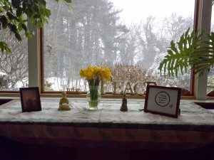 Resting and Healing: Still Water Winter Practice Retreat