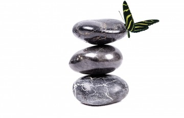 Balance: A Dance of Forgetting and Remembering