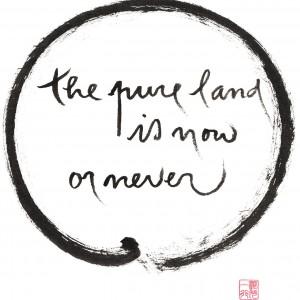 11x17-master-sheet_0020_G-042-Pureland